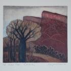 Boab-Trees-Kimberley